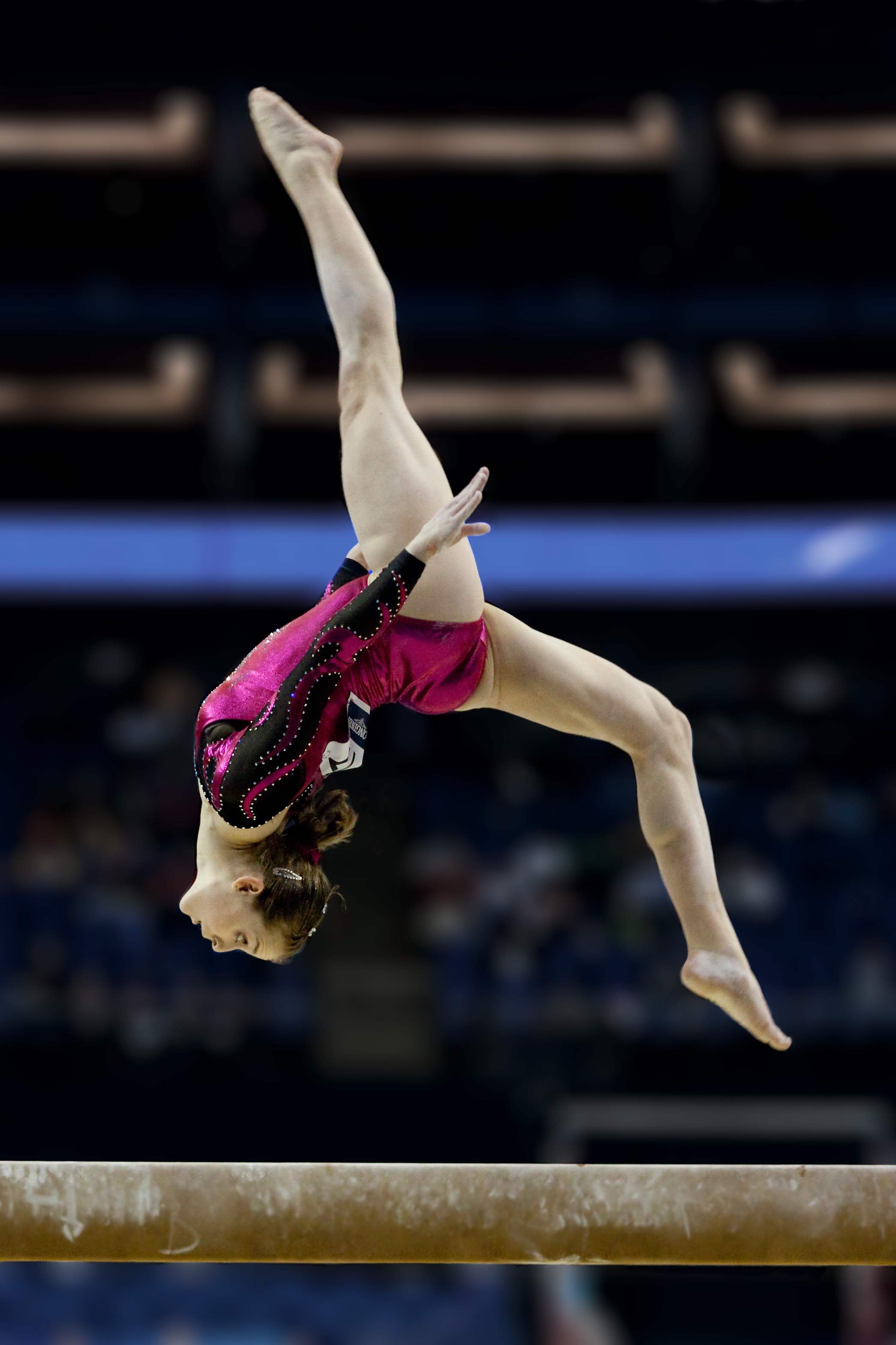 Lauren Mitchell, 41st AG World Championship, 2009